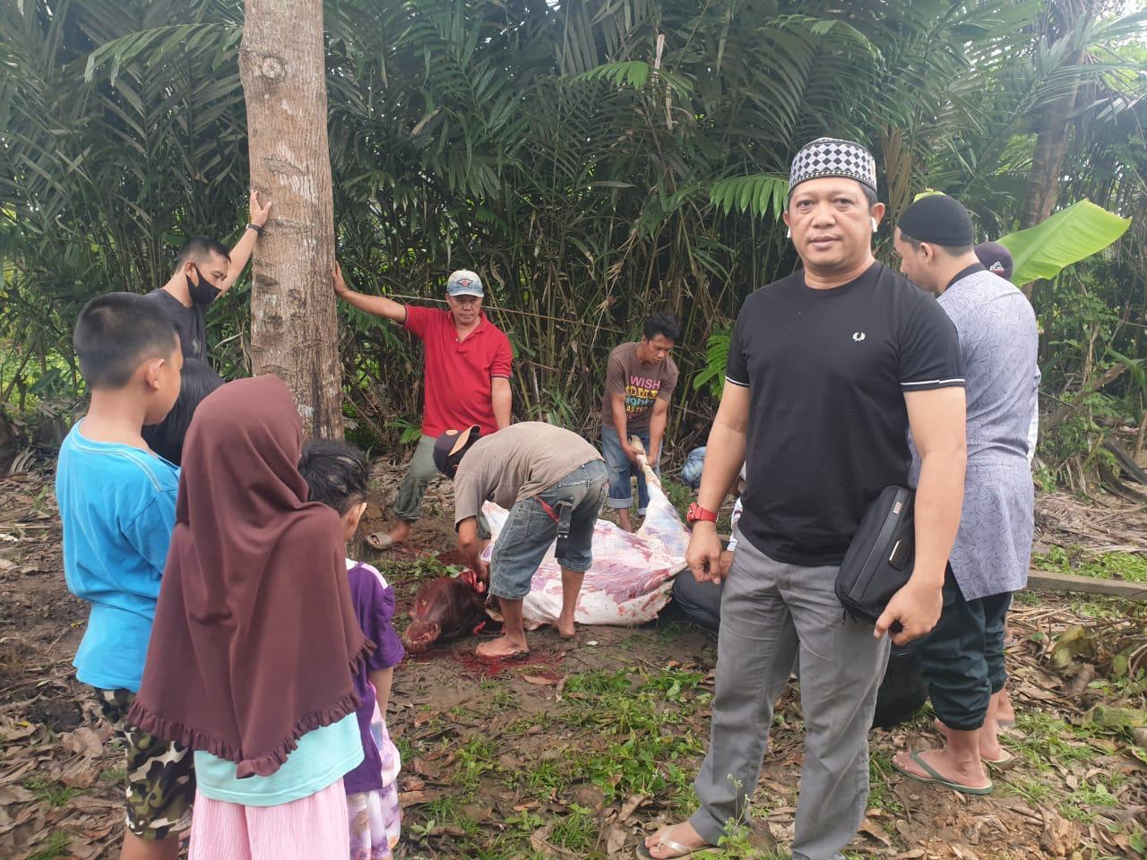 DPW Pekat IB Sultra Berbagi Daging Kurban