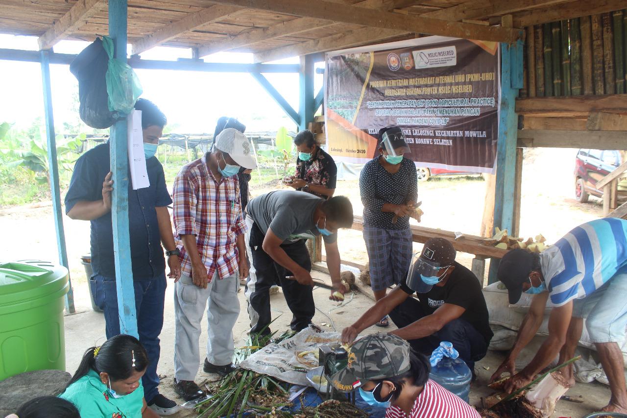 Dosen Proteksi Tanaman UHO Dampingi Dasa Wisma Konsel Terapkan GAP Sayuran Organik di Tengah Pandemi Covid-19